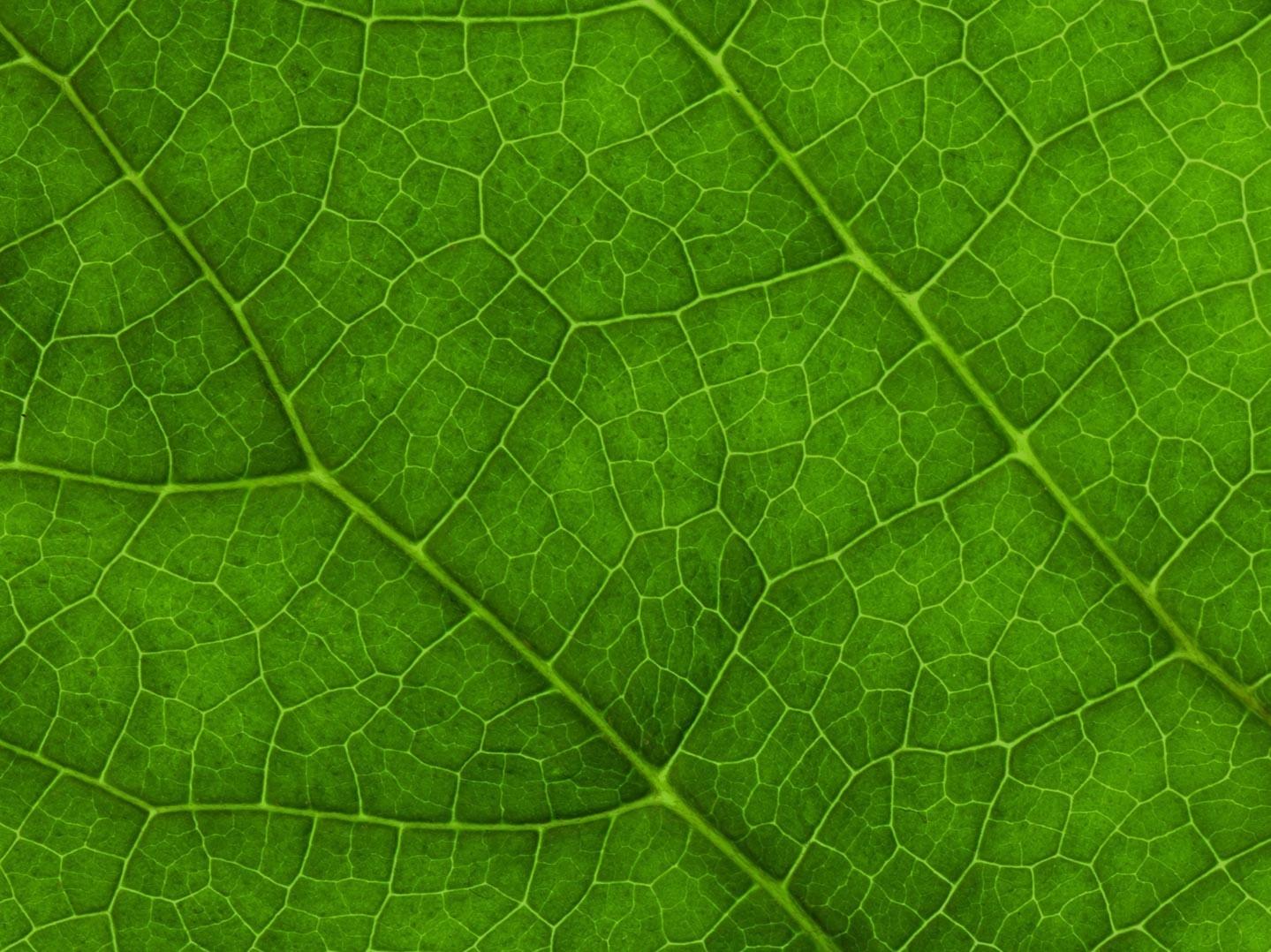 Inspiratiegids doelgroepgericht programmeren over duurzaamheid