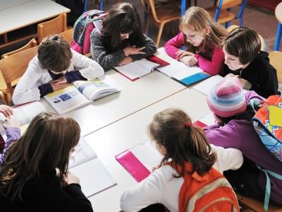 De Bibliotheek op school Expertise