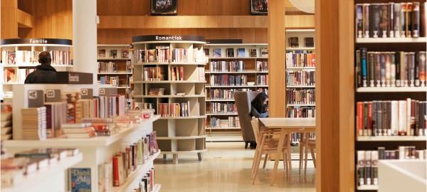 Dossier Bibliotheek en Basisvaardigheden - offline activiteiten op 1,5m afstand